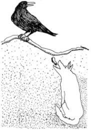 foxcrow1.jpg